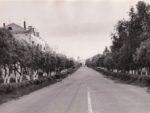 Улица Большевистская. Общий вид. 1974. Ф.140.Оп.1.Д.1250